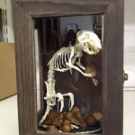 Rat skeleton holding a acorn