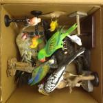 Box-O-Birds
