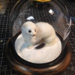 Ermine in snow scape dome