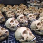 Monkey skull touch-ups