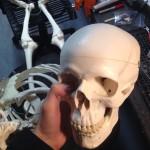 Vinyl skull reinforcement