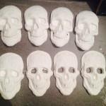 Skull casts