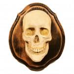 Spirit Skull 5 of 20